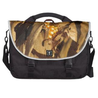 Ripe ear of corn at sunset laptop commuter bag