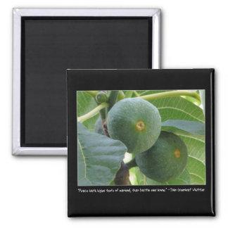 Ripe Figs Magnet