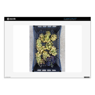 """Ripe grapes in box decal for 15"""" laptop"""