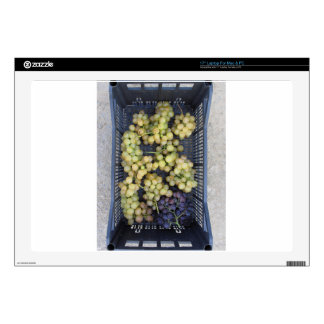 Ripe grapes in box laptop decal