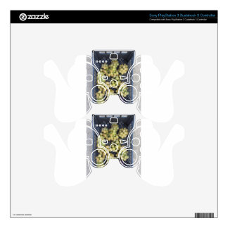 Ripe grapes in box PS3 controller decal