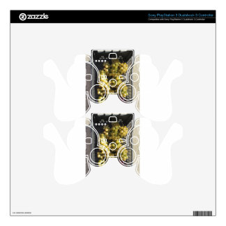 Ripe grapes in box PS3 controller skins