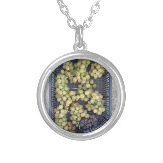 Ripe grapes in box silver plated necklace