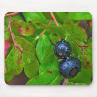 Ripe huckleberries in a light rain mouse pad