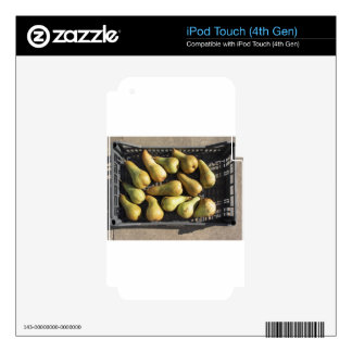 Ripe pears in box iPod touch 4G decal
