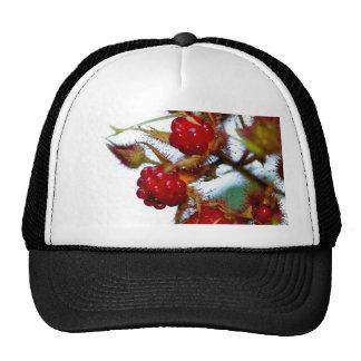 Ripe Raspberries Mesh Hats