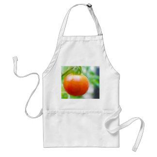 Ripe Red Heirloom Tomato Adult Apron