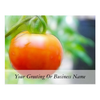 Ripe Red Heirloom Tomato Postcard