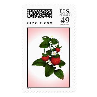 Ripe Strawberries Ripe Stamps