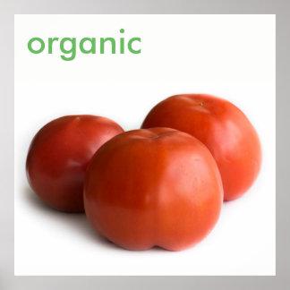Ripe tomato poster