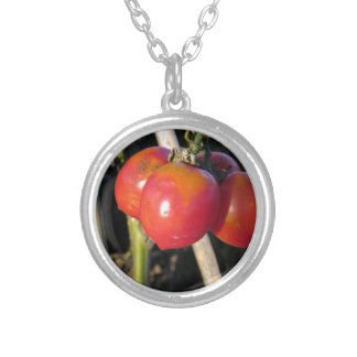 Ripe tomatoes on a branch silver plated necklace