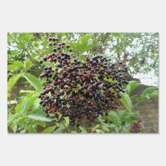 Ripening Elderberries Decorative Yard Sign