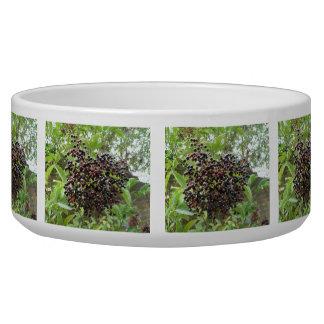Ripening Elderberries Dog Bowl
