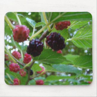 Ripening Mulberries Mouse Pad