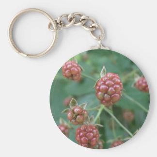 Ripening Red Rasberries Basic Round Button Keychain