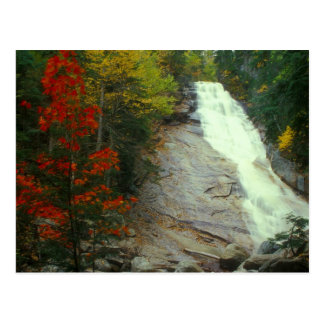 Ripley baja la cascada blanca del otoño de las postal