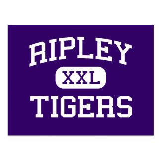 Ripley - tigres - High School secundaria - Ripley Postal