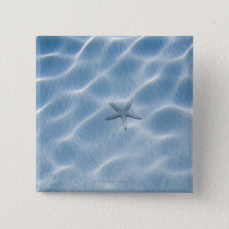 Rippled blue water with starfish button