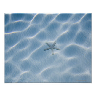 Rippled blue water with starfish poster