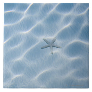 Rippled blue water with starfish ceramic tiles