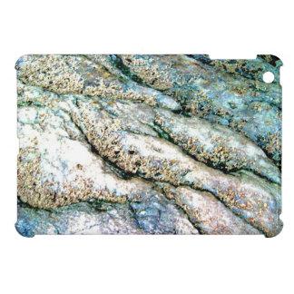 Rippled Rock iPad Mini Case