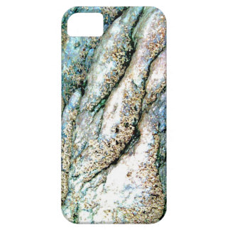Rippled Rock iPhone 5 Case