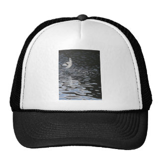 Ripples and a Avocet in contrast Trucker Hat