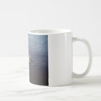 Ripples in a lake, from a fish jumping coffee mug
