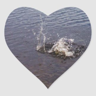 Ripples in a lake, from a fish jumping heart sticker