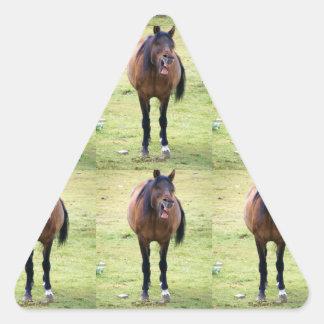 Risa de LOL hacia fuera ruidosa Pegatina Triangulo