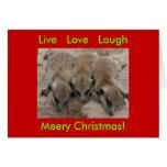 Risa viva del amor - tarjeta de los días de fiesta