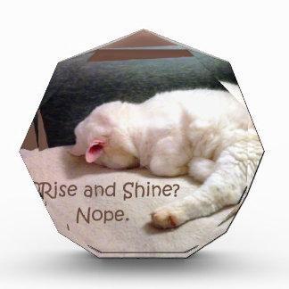 Rise and Shine Nope Awards