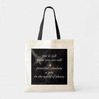 """rise & fall"" moon bag"