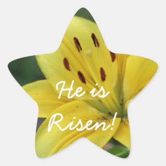 Risen Lily Star Sticker