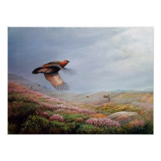 Rising Grouse - print on canvas