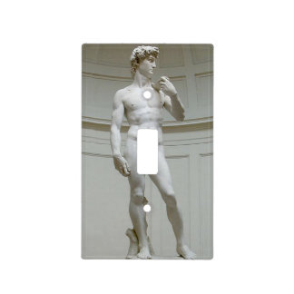 Risque Michelangelo's David Light Switch Cover