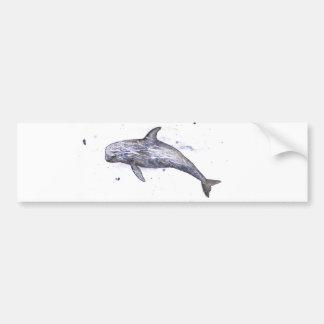 Risso Dolphin Illustration Bumper Sticker