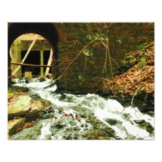 Rite of Passage Photograph