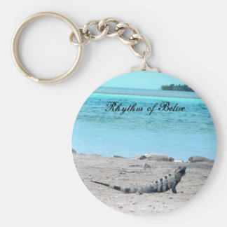 Ritmo de la iguana de Belice por el mar Llavero Redondo Tipo Pin