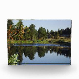 River at Dawn Acrylic Award