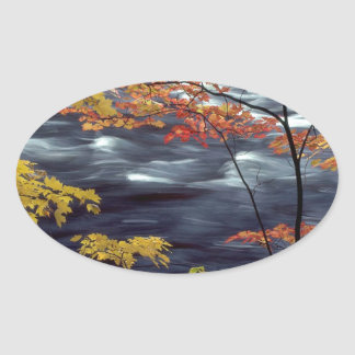 River Autumn Colors A Rushing Oval Sticker