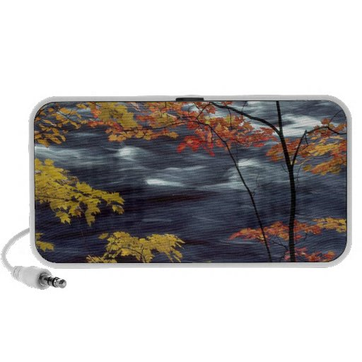 River Autumn Colors A Rushing Speaker
