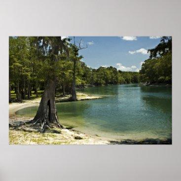 Beach Themed River Beach, Suwannee River, Florida Print