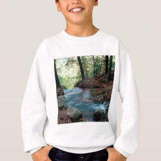 River Buttermilk Falls Delaware Gap New Jersey Sweatshirt