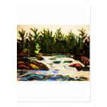 River by John david Hart-donation attawapiskat Post Cards