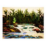 River by John david Hart-donation attawapiskat Postcard