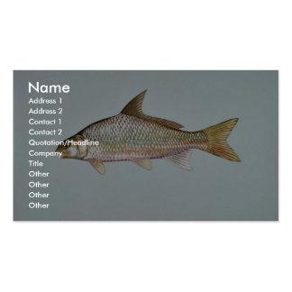 River Carpsucker Business Cards