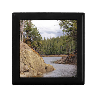 River Channel Temperate Rain Forest Canada Gift Boxes