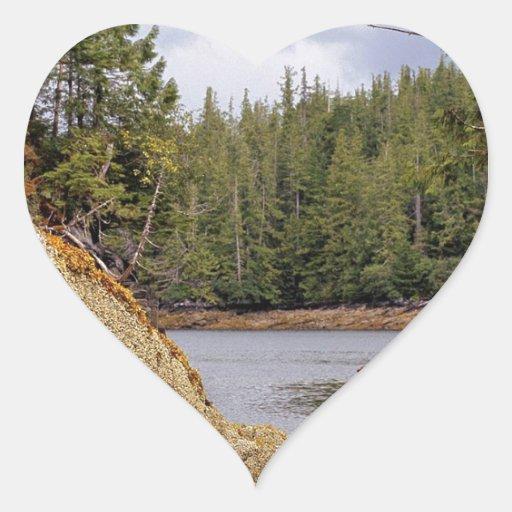 River Channel Temperate Rain Forest Canada Heart Sticker