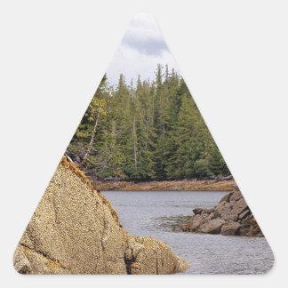 River Channel Temperate Rain Forest Canada Sticker
